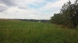 Pozemky u golfového hřiště v Kácově na prodej